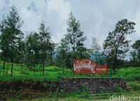 Kali Talang biasanya cukup ramai dikunjungi wisatawan pada hari Sabtu-Minggu dan libur. Pengunjungnya rata-rata 100 orang per hari. (Foto: Achmad Syauqi)