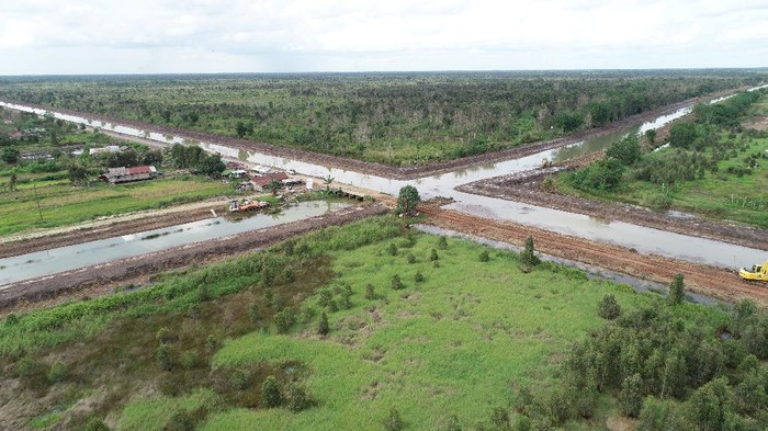 Proyek lumbung pangan (food estate) di Kalimantan Tengah