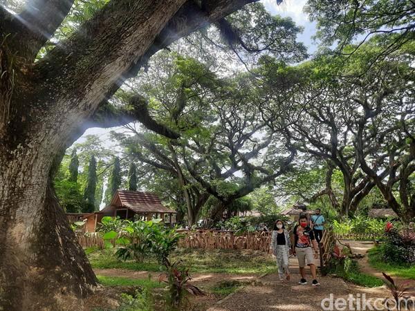 Dipilihnya nama Djawatan juga untuk menostalgia kepada masyarakat akan nilai sejarah tempat ini.Ketika buka di masa pandemi Corona, kunjungandi hari biasa mencapai 250-300 orang dan weekend 500-1000 orang.