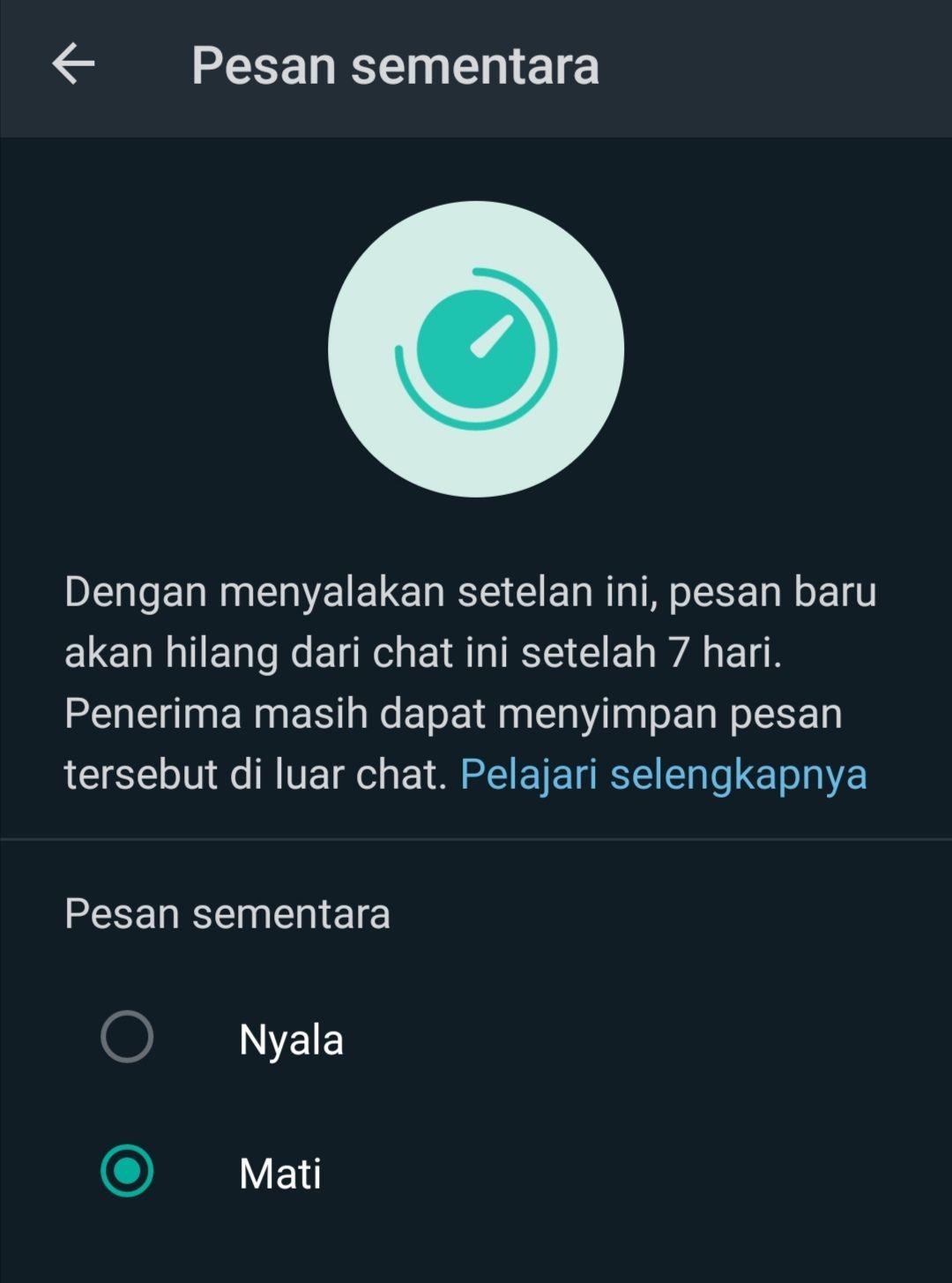 Pesan Sementara WhatsApp