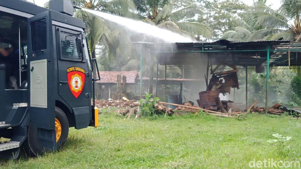 Teror Semut di Banyumas Belum Reda, BPBD Suplai Pestisida