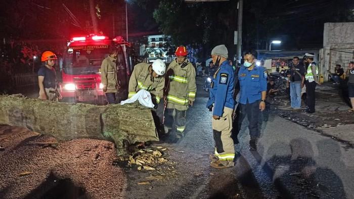 Pohon tumbang tewaskan pemotor di Bandung
