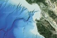 Cacing ini ditemukan di Monterey Canyon, California, Amerika Serikat tahun 2007. (Karen Osborn/MBARI)