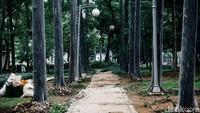 Proses revitalisasi Taman Tebet terus berlangsung, Jakarta, Senin (16/11/2020). Seperti diketahui, Taman Tebet tengah direvitalisasi menjadi Eco Garden.