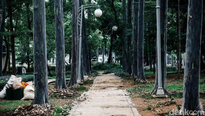 Proses revitalisasi Taman Tebet terus dilakukan. Taman itu diketahui direvitalisasi menjadi Eco Garden. Sudah sejauh mana progres revitalisasinya?