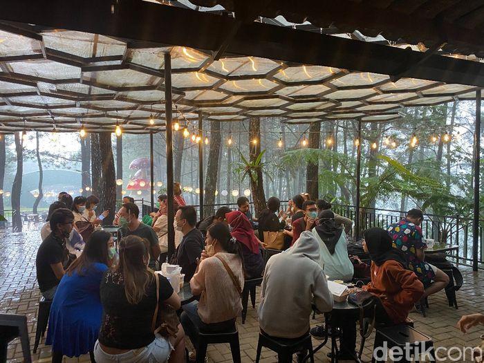 Ngopi Santai di Tengah Hutan Pinus yang Ada di Kafe Daong