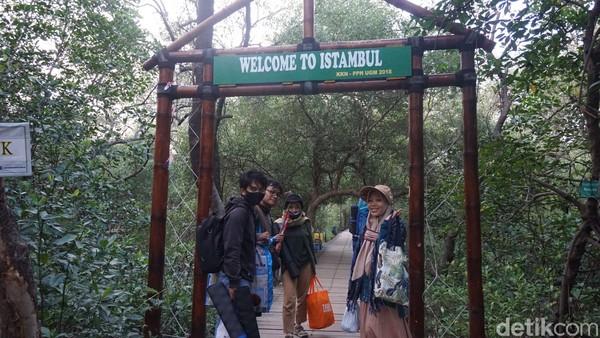 Setelah itu, pengunjung bisa menikmati trek mangrove. Jenis pohon mangrovenya pun beragam, dari avicennia alba dan lain-lain. Setidaknya sekitar 31 jenis pohon mangrove.