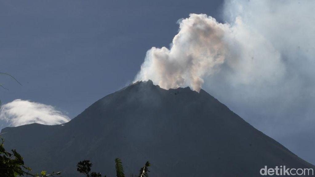 Aktivitas Vulkanik Merapi Meningkat, Tebing Kubah Lava Runtuh