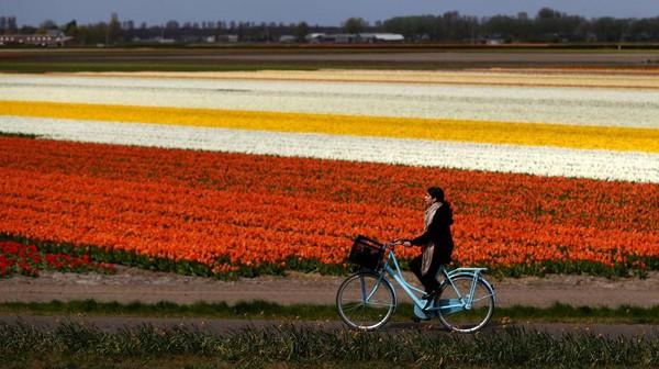 Lokasinya sangat mudah dijangkau dan paling pas untuk kegiatan bersepeda.