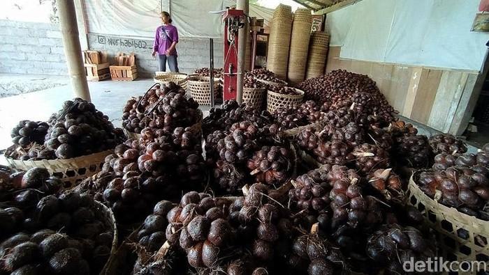 Pandemi COVID-19 membuat petani salak di lereng Gunung Merapi kesulitan mengekspor hasil panennya. Sejauh ini para petani baru empat kali melakukan pengiriman.