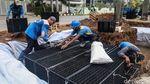 Intip Pembuatan Sumur Resapan untuk Atasi Banjir di Jakbar