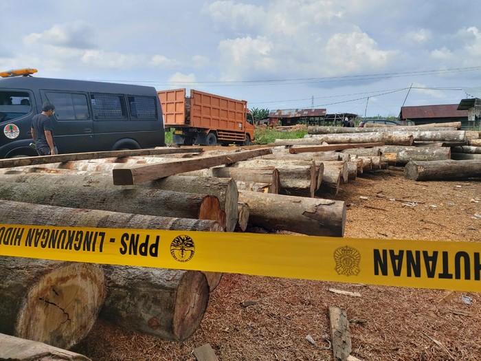Razia sawmill ilegal di Riau (Chaidir-detikcom)