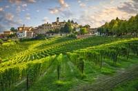 Asosiasi tersebut memutuskan untuk menetapkan nama Kota Wine untuk pertama kalinya di tahun ini. Sehingga, nama itu akan berlaku pada tahun 2021 dan Desa Barolo dinyatakan sebagai pemenangnya.