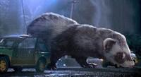 Tak ada lagi sisi menakutkan adegan Jurassic Park kalau seperti ini, bukan? (Things that are not aesthetic/Facebook)