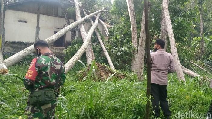 Hujan deras disertai angin puting beliung menerjang sebuah desa di Kabupaten Blitar. Dalam sekejap, ratusan pohon tumbang dan menimpa lima rumah warga.