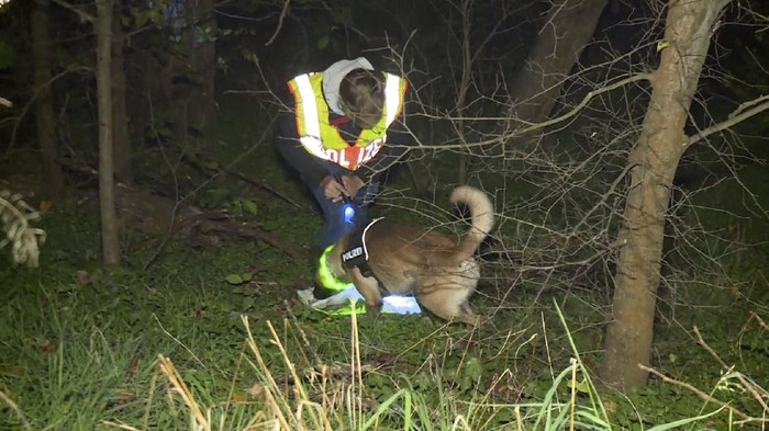 In this Nov. 9, 2020 photo, a policeman with a tracker dog is searching for a missing man in Berlin, Germany. German prosecutors said Friday Nov. 20, 2020, there is evidence of cannibalism in the killing of a 44-year-old man whose remains were found on the northern edge of Berlin earlier this month. A 41-year-old man was arrested on suspicion of murder with sexual motives at his home close to the site where the victims bones were found. (Telenewsnetwork/dpa via AP)