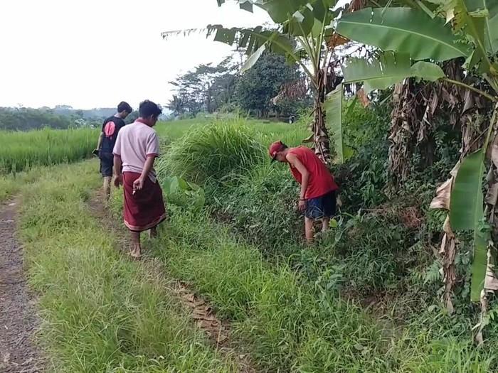 Saluran air irigasi lokasi penemuan uang puluhan juta berserakan di Batang, Sabtu (21/11/2020).