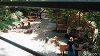 Lokasinya berada tepat di dalam Tahura, Jalan Pakar Bar No 5, Ciburial, Cimenya, Kota Bandung. Tempat ini juga bisa dijadikan kelas terbuka sementara bagi siswa yang bosan sekolah daring. (Siti Fatimah/detikcom)