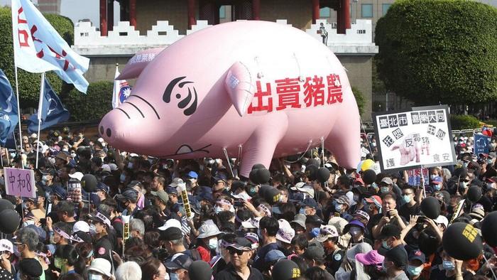 Ribuan orang di Taipei berdemo tuntut pembatalan keputusan mengizinkan impor daging babi AS ke Taiwan. Balon babi raksasa pun terlihat di tengah aksi tersebut.