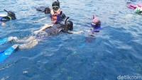 Begitu juga dengan snorkeling. Traveler wajib memakai life fest dan alat snorkeling. Di masa pandemi, alat snorkelingnya dipastikan sudah bersih dan steril. (Esti Widiyana/detikcom)