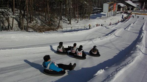 Keseruan musim dingin juga bisa traveler nikmati di Provinsi Gangwon. Seru-seruan meluncur di salju bersama teman-teman pastinya tak akan terlupakan.