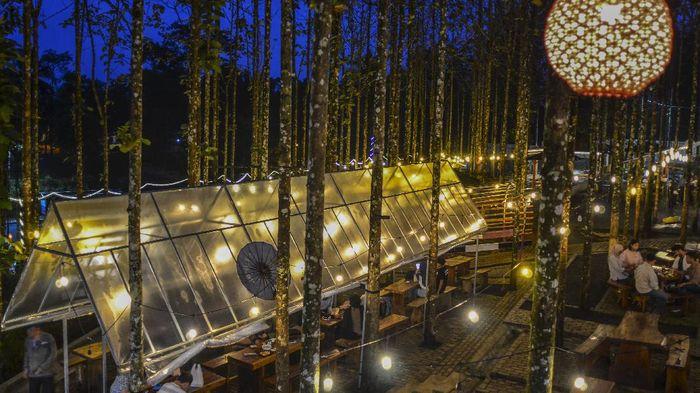 Jati Sewu Cibungbang jadi salah satu objek wisata andalan di Ciamis. Selain kedai kopi, objek wisata itu juga memiliki fasilitas penginapan hingga kolam renang.