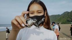 Foto: Tukik-tukik Penyu Lucu yang Dilepas di Pantai Sukamade