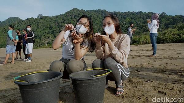 Pantai Sukamade terletak di kawasan Taman Nasional Meru Betiri, Desa Sarongan, Kecamatan Pasanggaran, Kabupaten Banyuwangi. Pengunjung yang menginap pasti akan dapat kesempatan melepasliarkan tukik atau anak penyu di Pantai Sukamade.