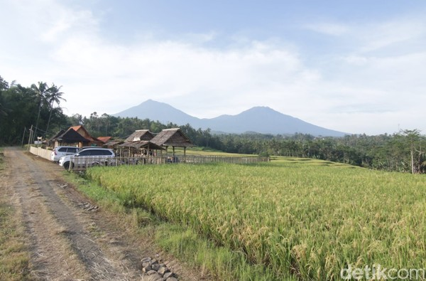 Taman Langit terletak di di Desa Banjar Kecamatan Licin, Kabupaten Banyuwangi.