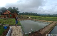 Setelah ramai oleh wisatawan, Taman Langit akhirnya disokong oleh BUMDes.