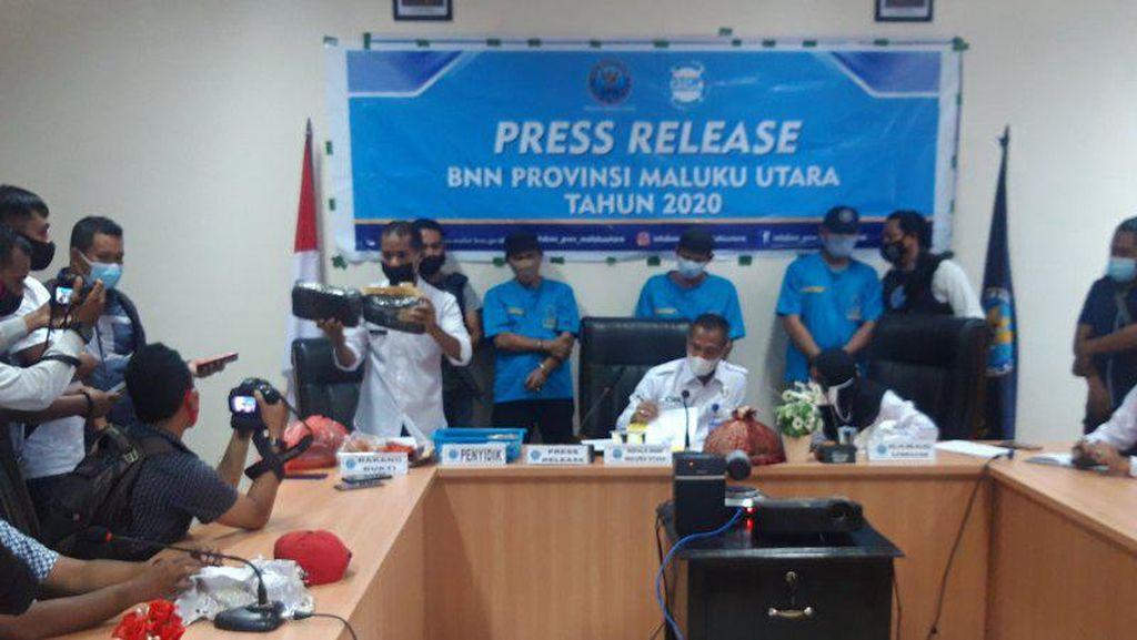 BNNP Malut Tangkap 3 Pria Terkait Kasus Sabu, Salah Satunya Oknum Polisi