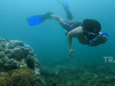 My Trip My Adventure: Snorkeling di Pantai Mutiara Sumbawa