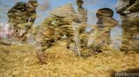 Generasi Milenial Didorong Terjun ke Dunia Pertanian, Bagaimana Caranya?