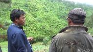 Kronologi Pikap Terguling-guling ke Jurang di Lumajang yang Videonya Viral
