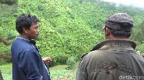 Peristiwa Pikap Jatuh Terguling-guling ke Jurang di Lumajang