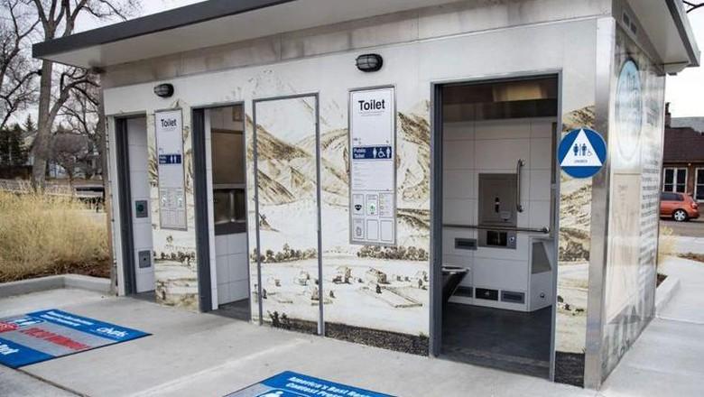 Toilet Terbaik di AS Harganya Rp 4,2 M, Apa Istimewanya?