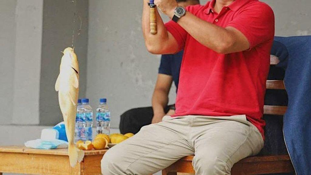 Fakta Kebijakan Ekspor Benih Lobster yang Bikin Edhy Prabowo Ditangkap KPK