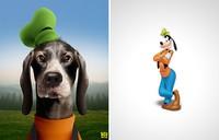 fotoinet karakter hewan kartun