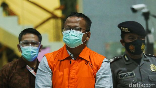 Menteri Kelautan dan Perikanan Edhy Prabowo ditetapkan sebagai tersangka penerima suap terkait dengan urusan ekspor benih lobster atau benur.