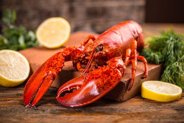 5 Fakta Lobster yang Dulu Dianggap Makanan Orang Miskin