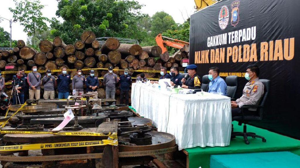5 Hari Operasi, Polda Riau-KLHK Sita Ratusan Kayu Ilegal di SM Rimbang Baling