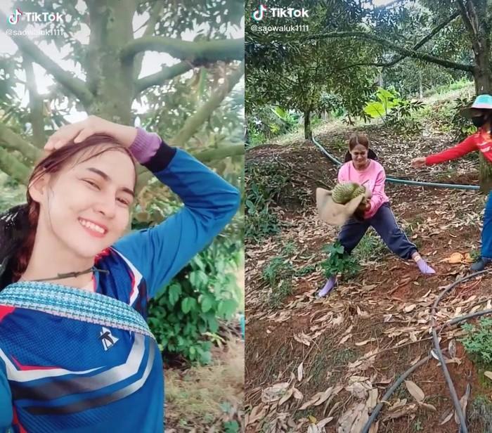 Jago Tangkap Durian, Wanita Cantik Ini Jadi Idola Netizen