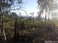 Seluruh permukaan Bukit Tutari dipenuhi bongkahan-bongkahan batu berwarna hitam. (Hari Suroto/Istimewa)