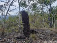 Batu menhir kemudian dianggap spesial oleh masyarakat Kampung Doyo. (Hari Suroto/Istimewa)