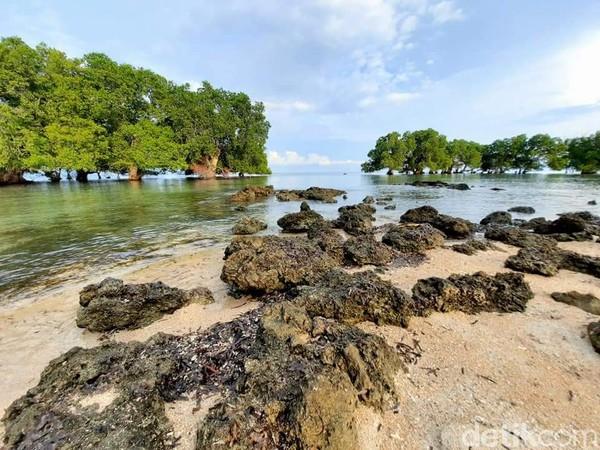 Latar pepohonan mangrove menjadi spot foto favorit. (Dokumen Pokdarwis Desa Malaju)