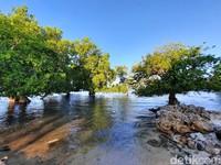 Banyak spot foto cantik yang bisa traveler temukan di sini. (Dokumen Pokdarwis Desa Malaju)