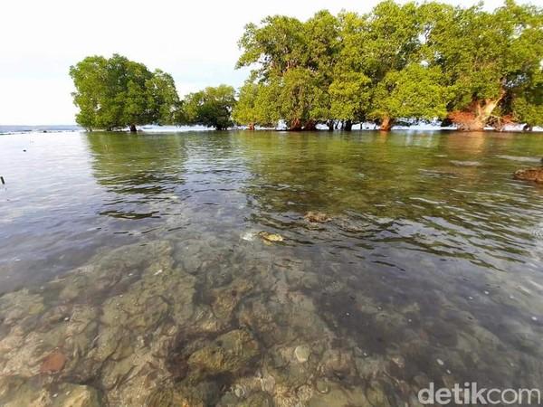 Selain berenang, traveler bisa wisata kuliner menikmati seafood. (Dokumen Pokdarwis Desa Malaju)