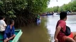 TKP Petani Tambak di Kalsel Diterkam Buaya Disebut Rawan, Ini Sebabnya