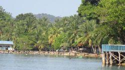 Desa Sarpokren, Surganya Burung dari Raja Ampat