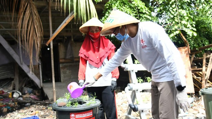 Menyulap ruang sempit menjadi lahan hijau memang bukan perkara mudah. Namun, hal ini bisa dibuktikan oleh Kelompok Tani D'Syafa, Kampung Becek, Kelurahan Malaka, Kecamatan Duren Sawit, Jakarta Timur.